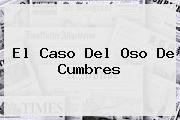 El Caso Del <b>Oso De Cumbres</b>