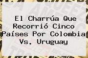 El Charrúa Que Recorrió Cinco Países Por <b>Colombia Vs</b>. <b>Uruguay</b>