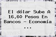 El <b>dólar</b> Sube A 16.60 Pesos En Bancos - Economía <b>...</b>