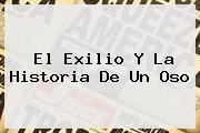 El Exilio Y La <b>Historia De Un Oso</b>