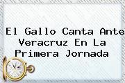 El Gallo Canta Ante <b>Veracruz</b> En La Primera Jornada