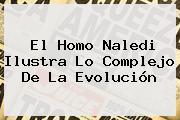 El <b>Homo Naledi</b> Ilustra Lo Complejo De La Evolución