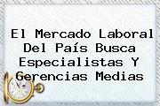 El Mercado Laboral Del País Busca Especialistas Y Gerencias Medias
