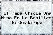 El Papa Oficia Una Misa En La <b>Basílica De Guadalupe</b>