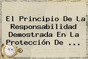 El Principio De La Responsabilidad Demostrada En La <b>Protección</b> De <b>...</b>