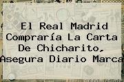 El <b>Real Madrid</b> Compraría La Carta De Chicharito, Asegura Diario Marca