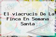 El <b>viacrucis</b> De La Finca En Semana Santa