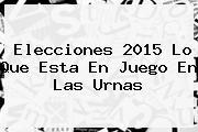 <b>Elecciones 2015</b> Lo Que Esta En Juego En Las Urnas