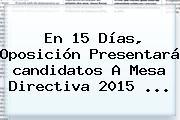 En 15 Días, Oposición Presentará <b>candidatos</b> A Mesa Directiva <b>2015</b> <b>...</b>