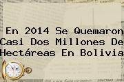 En 2014 Se Quemaron Casi Dos Millones De Hectáreas En <b>Bolivia</b>