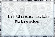 En <b>Chivas</b> Están Motivados
