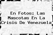 En Fotos: Las Mascotas En La Crisis De <b>Venezuela</b>
