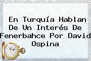 En Turquía Hablan De Un Interés De Fenerbahce Por <b>David Ospina</b>