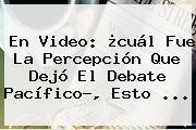 En Video: ¿cuál Fue La Percepción Que Dejó El <b>Debate Pacífico</b>?, Esto ...