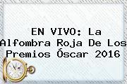 EN <b>VIVO</b>: La Alfombra Roja De Los <b>Premios Óscar 2016</b>