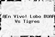 ¡En Vivo! Lobo BUAP Vs Tigres