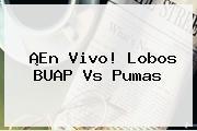 ¡En Vivo! <b>Lobos BUAP Vs Pumas</b>