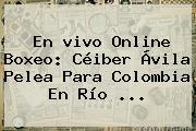 En <b>vivo</b> Online Boxeo: Céiber Ávila Pelea Para Colombia En Río ...