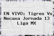 EN VIVO: <b>Tigres Vs Necaxa</b> Jornada 13 Liga MX