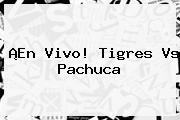 ¡En Vivo! <b>Tigres Vs Pachuca</b>