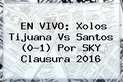 EN VIVO: Xolos <b>Tijuana Vs Santos</b> (0-1) Por SKY Clausura 2016