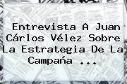 Entrevista A Juan Cárlos Vélez Sobre La Estrategia De La Campaña ...