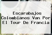 Escarabajos Colombianos Van Por El <b>Tour De Francia</b>