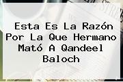 Esta Es La Razón Por La Que Hermano Mató A <b>Qandeel Baloch</b>