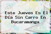 Este Jueves Es El <b>Día Sin Carro</b> En <b>Bucaramanga</b>