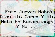 Este Jueves Habrá Días <b>sin Carro</b> Y <b>sin</b> Moto En <b>Bucaramanga</b> Y Su ...