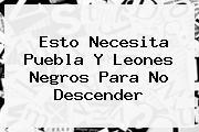 Esto Necesita Puebla Y <b>Leones Negros</b> Para No Descender