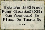 Extraño &#039;<b>pez Remo</b> Gigante&#039; Que Apareció En Playa De Tacna No ...