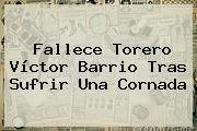 Fallece Torero <b>Víctor Barrio</b> Tras Sufrir Una Cornada