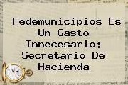 Fedemunicipios Es Un Gasto Innecesario: <b>Secretario De Hacienda</b>