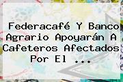 Federacafé Y <b>Banco Agrario</b> Apoyarán A Cafeteros Afectados Por El <b>...</b>