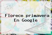 Florece <b>primavera</b> En Google