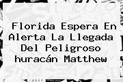 Florida Espera En Alerta La Llegada Del Peligroso <b>huracán Matthew</b>