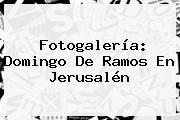Fotogalería: <b>Domingo De Ramos</b> En Jerusalén