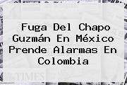 Fuga Del <b>Chapo Guzmán</b> En México Prende Alarmas En Colombia