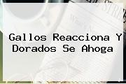 Gallos Reacciona Y <b>Dorados</b> Se Ahoga