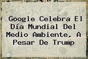 Google Celebra El <b>Día Mundial Del Medio Ambiente</b>, A Pesar De Trump