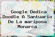 Google Dedica Doodle A Santuario De La <b>mariposa Monarca</b>