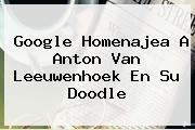 Google Homenajea A <b>Anton Van Leeuwenhoek</b> En Su Doodle
