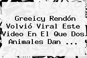 Greeicy Rendón Volvió Viral Este Video En El Que Dos Animales Dan ...