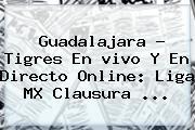 Guadalajara - Tigres En <b>vivo</b> Y En Directo Online: <b>Liga MX</b> Clausura ...