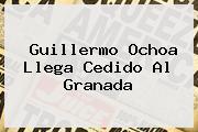 <b>Guillermo Ochoa</b> Llega Cedido Al Granada