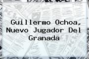 <b>Guillermo Ochoa</b>, Nuevo Jugador Del Granada