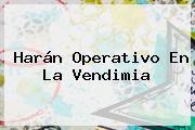 Harán Operativo En La <b>Vendimia</b>