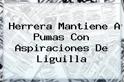 Herrera Mantiene A <b>Pumas</b> Con Aspiraciones De Liguilla