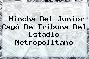 Hincha Del <b>Junior</b> Cayó De Tribuna Del Estadio Metropolitano